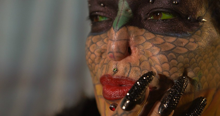 dragonfi