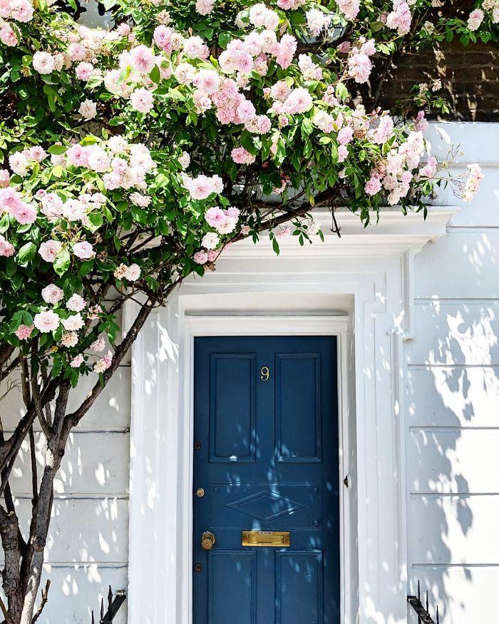colorful front doors photography london bella foxwell 27 5c36fa0c8884e 700