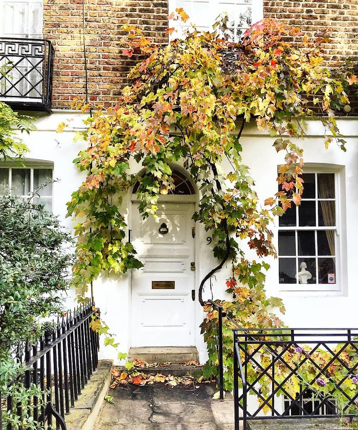 colorful front doors photography london bella foxwell 31 5c36fa14a8ac0 700