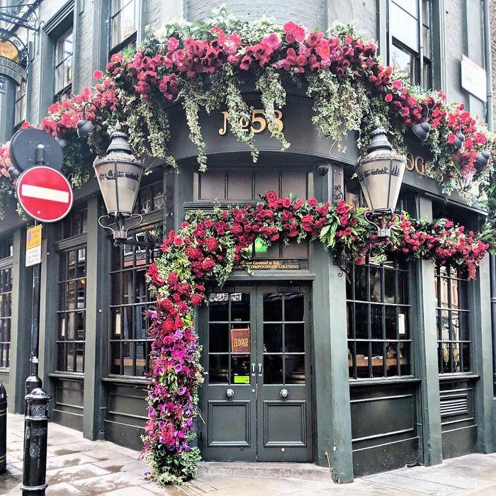 colorful front doors photography london bella foxwell 32 5c36fa16c46aa 700