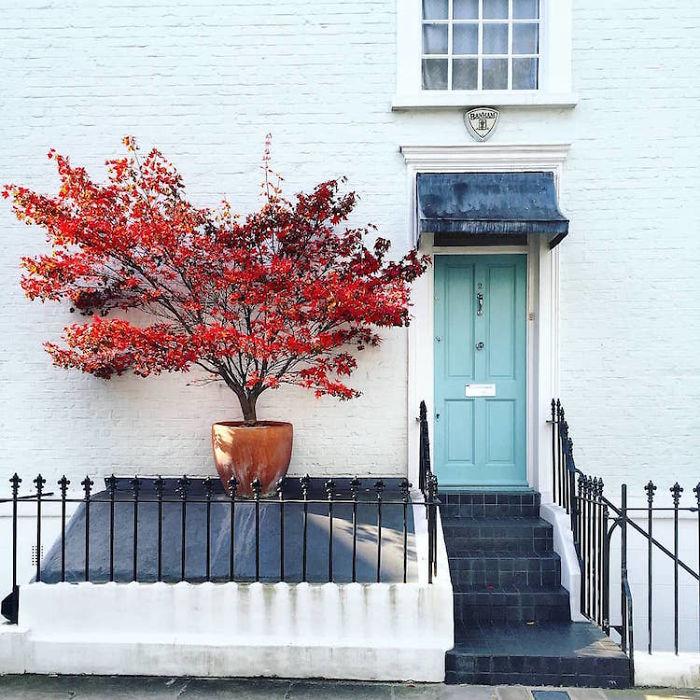 colorful front doors photography london bella foxwell 75 5c36fa737029b 700
