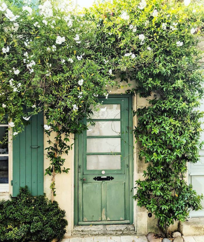 colorful front doors photography london bella foxwell 84 5c36fa843f1cb 700