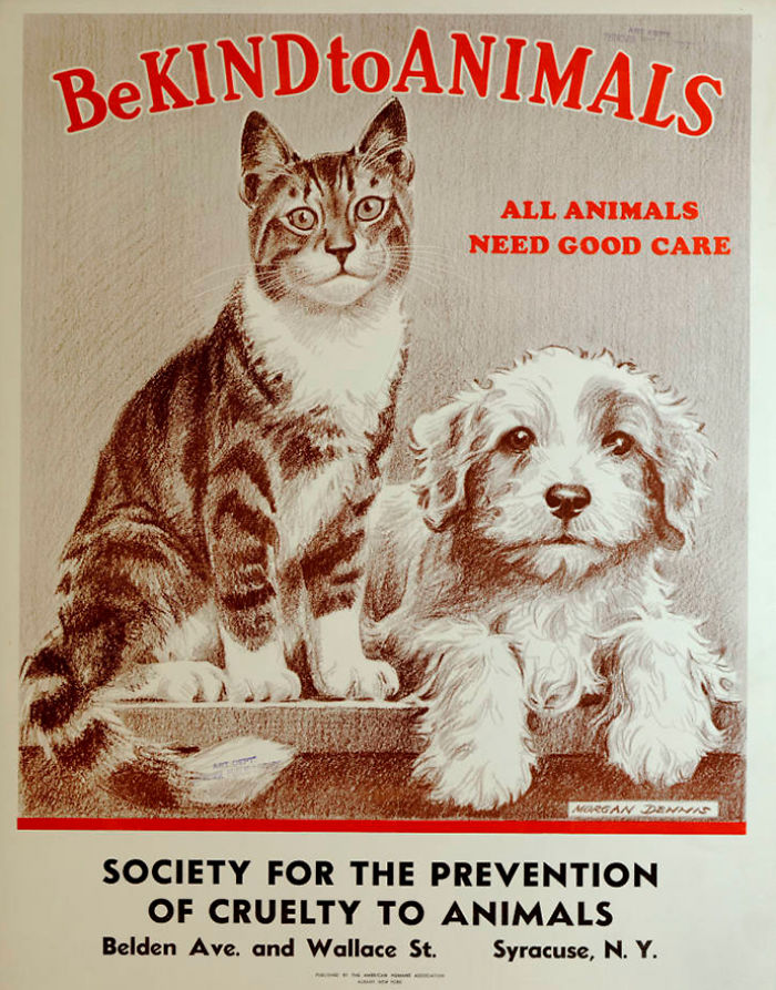 be kind to animals posters great depression morgan dennis17 5c9de78e7ed1f 700 1