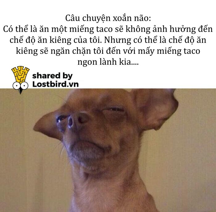 funny food memes 1 5bc747d4e8edd 700