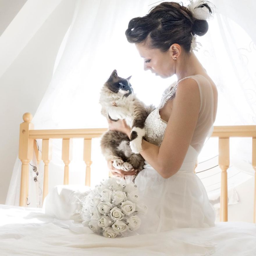 i do post marriage private shooting with cats 5a4deb6716dd4 880