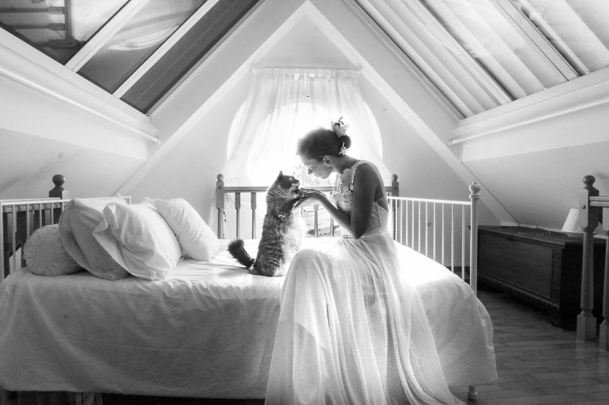 i do post marriage private shooting with cats 5a4deb69b479a 880
