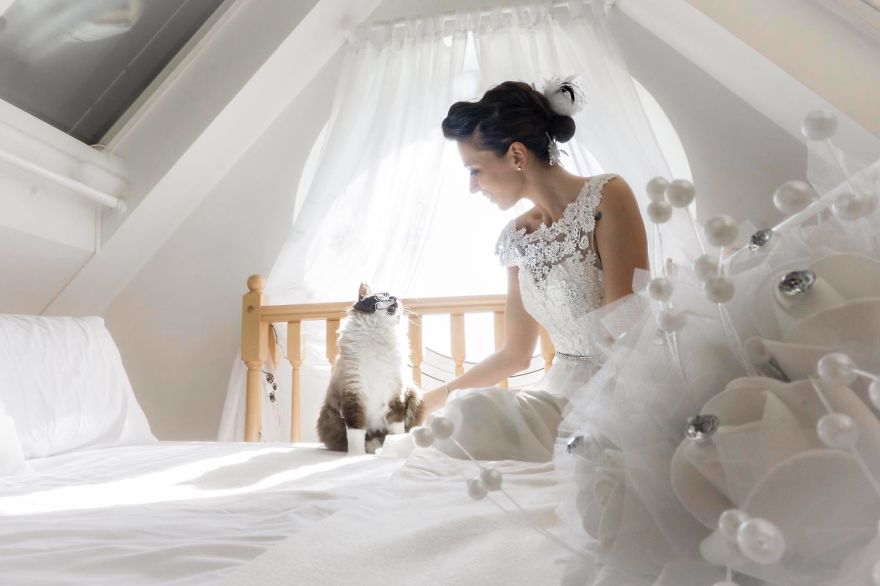 i do post marriage private shooting with cats 5a4deb6c89ed7 880