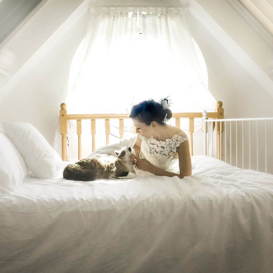 i do post marriage private shooting with cats 5a4deb6e6f180 880