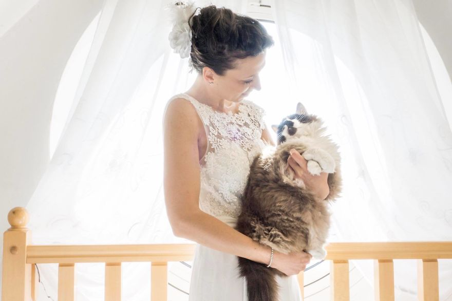 i do post marriage private shooting with cats 5a4deb78a1c37 880