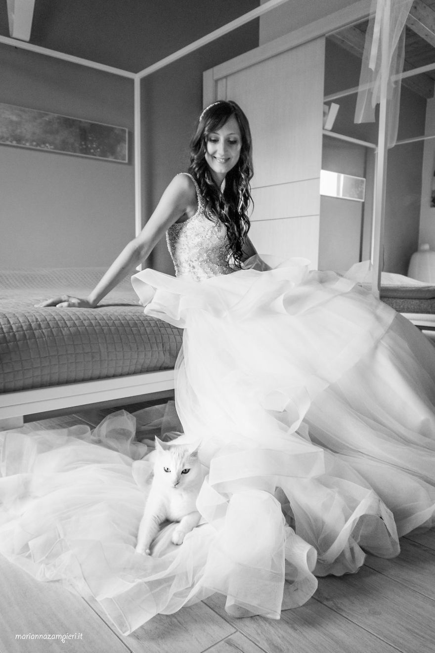 i do post marriage private shooting with cats 5a4deb7aa5073 880