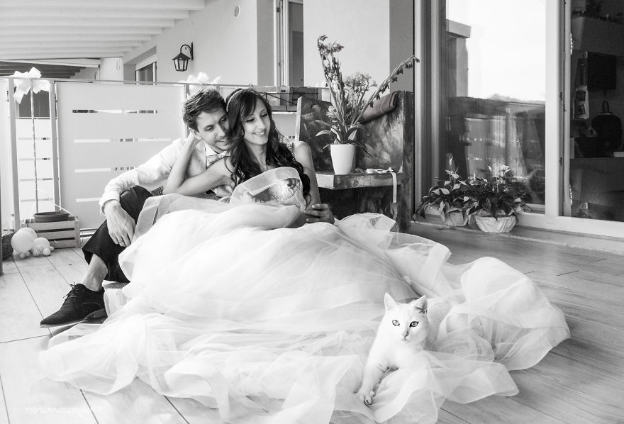 i do post marriage private shooting with cats 5a4deb7e9c44a 880