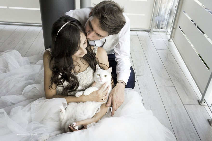 i do post marriage private shooting with cats 5a4deb8c6f371 880