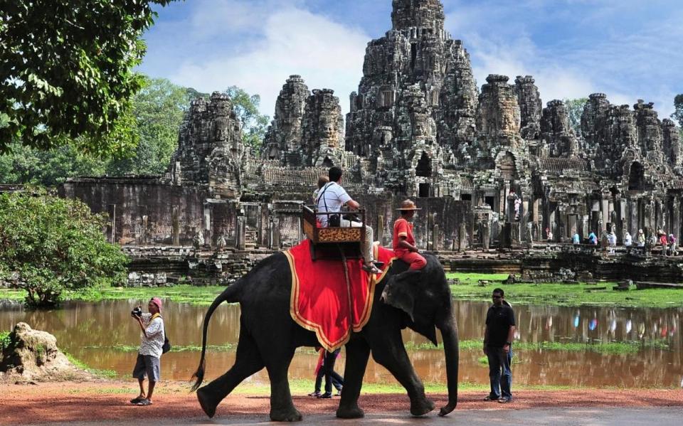 Dịch vụ cưỡi voi tại Angkor Wat (Campuchia) sẽ bị cấm vào năm 2020