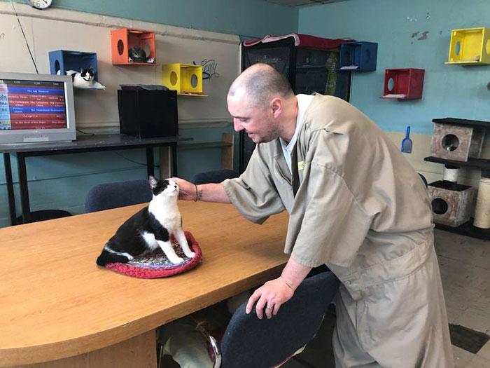 inmates pet rehabilitation pendleton correctional facility forward 15