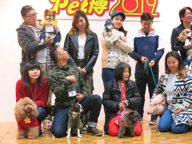 japan dog expo 1