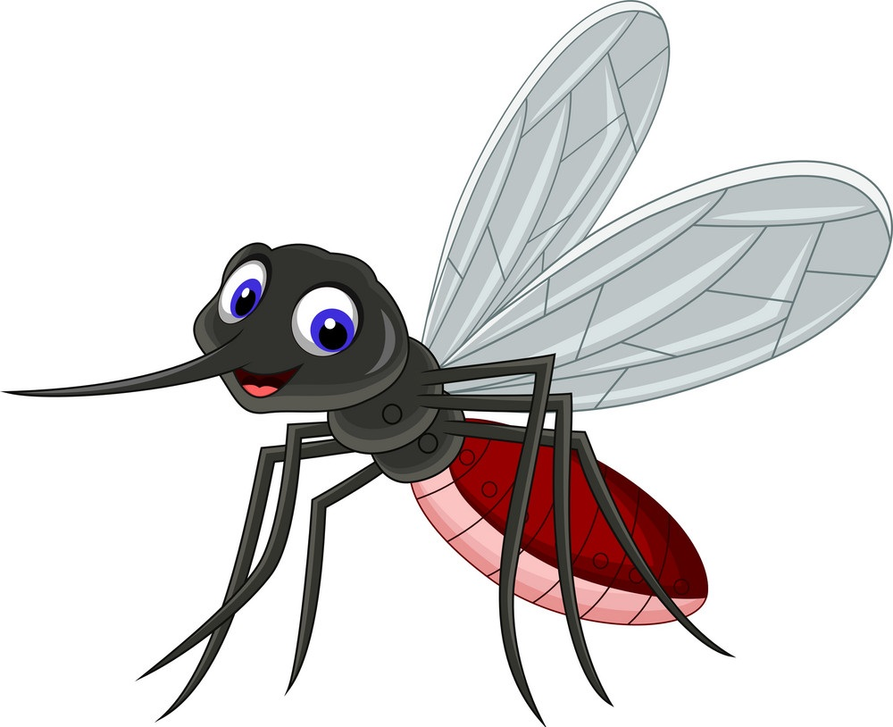 cute mosquito cartoon vector 9810704