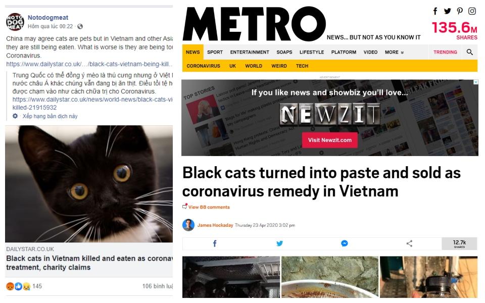 Báo Anh đưa tin người Việt Nam ăn mèo đen để chữa Corona