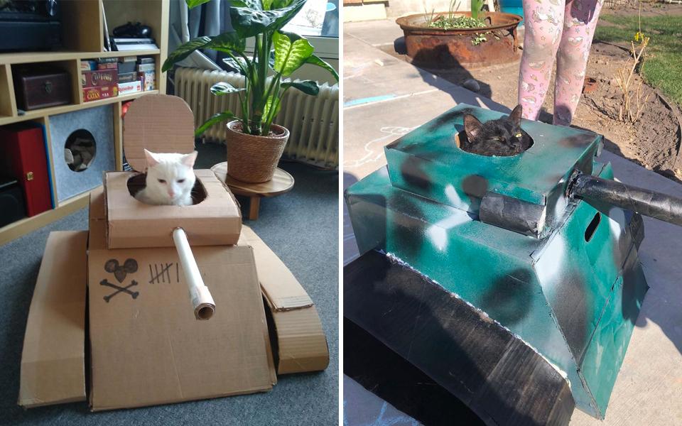 Xe tăng thùng giấy cho mèo bỗng trở thành món đồ chơi hot nhất mùa cách ly