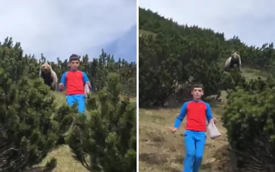Cuộc chạm trán nghẹt thở với gấu và cách thoát thân mà ai cũng nên học hỏi của cậu bé 12 tuổi