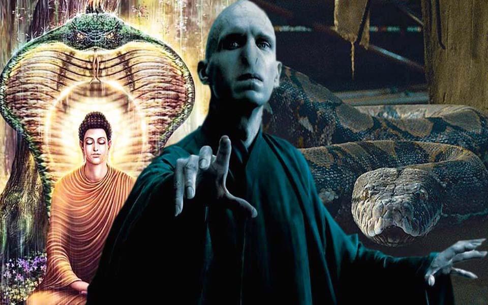 Những bí ẩn thú vị được cất giấu trong Harry Potter sau hơn 20 năm vẫn còn nhiều chuyện để nói