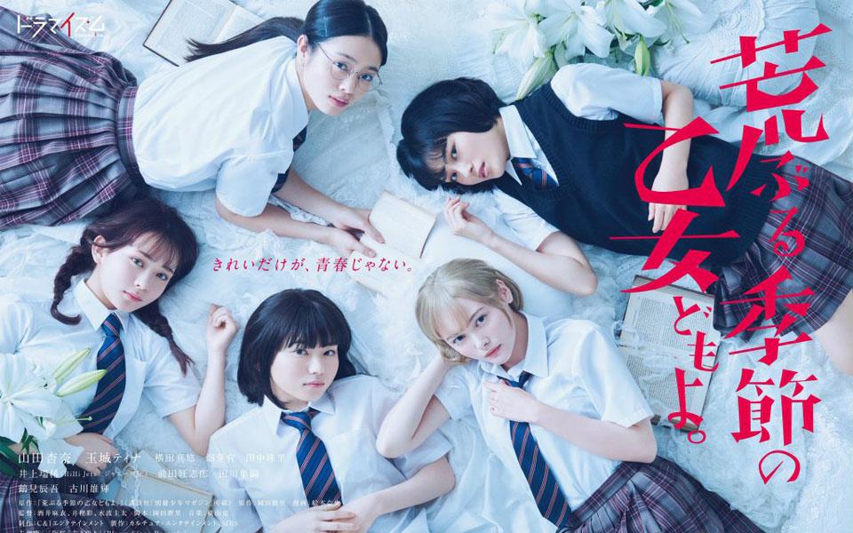 x 'Những Thiếu Nữ Trong Mùa Nổi Loạn': 'Sex Education' phiên bản đen tối và hài bựa đậm chất Nhật