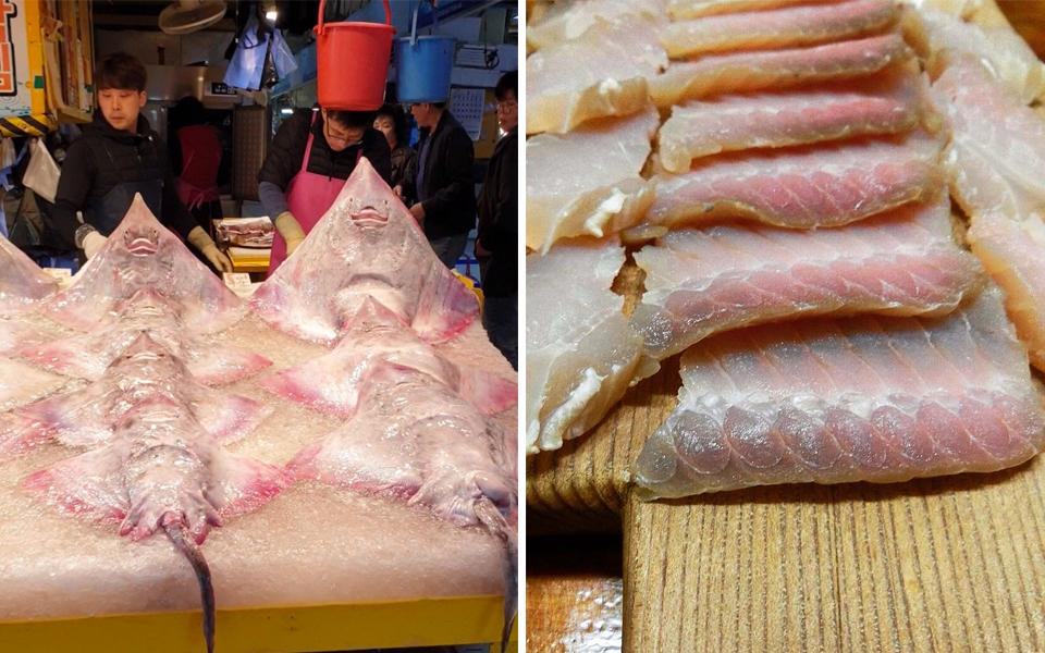 x: Hongeo: Món ăn Hàn có mùi khai như nhà vệ sinh khiến thực khách ăn một lần sợ đến già