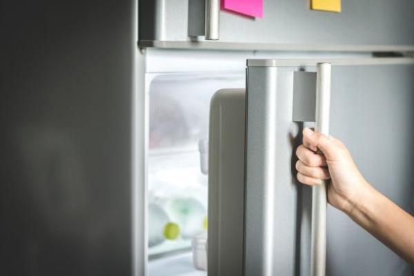fridge door 610x407