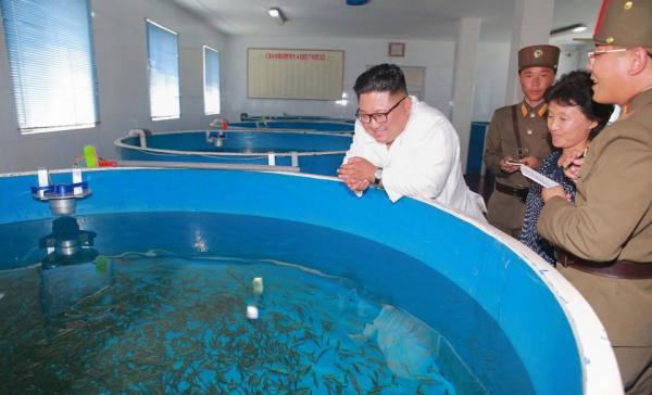 a rare smile as the leader visit the rajin salmon farm which is maintained by his army