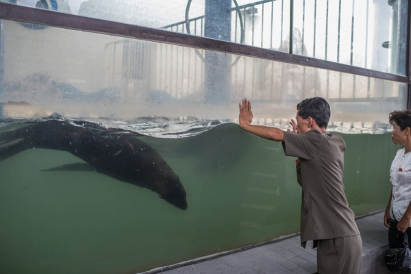 north koreans at work and play in pictures 24