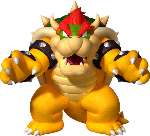 bowser based on owsy