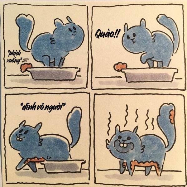 cat moments 1