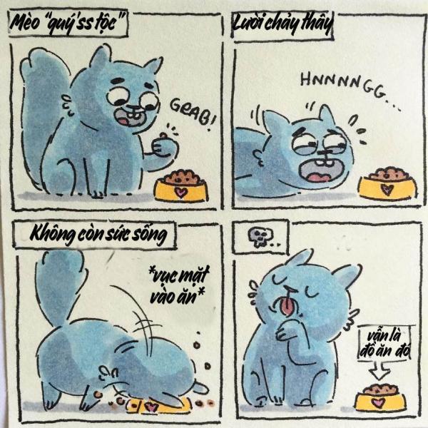 cat moments 12