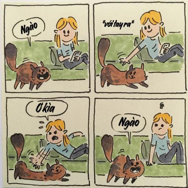 cat moments 13