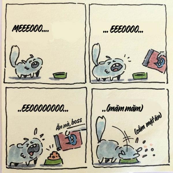 cat moments 2