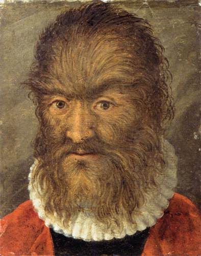 16th century unknown painters the hairy man from munich wga23788