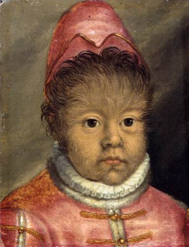 16th century unknown painters the son of the hairy man from munich wga23791