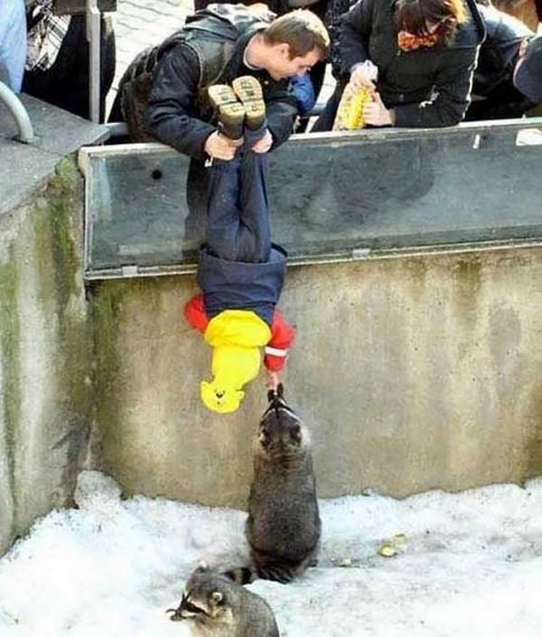 30 photos showcasing human parenting and animal parenting moments 9 1