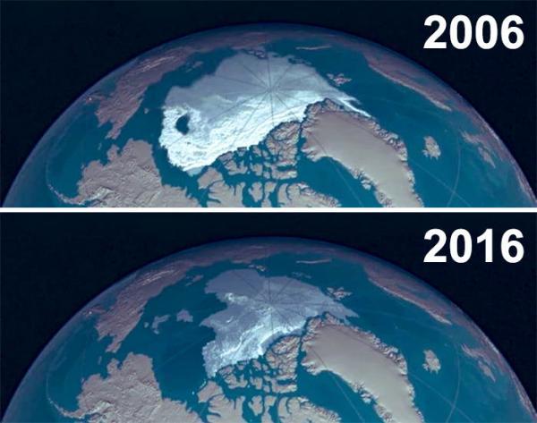 sad 10 year challenge nature memes 27 5c483c9c8c7ea 700 1