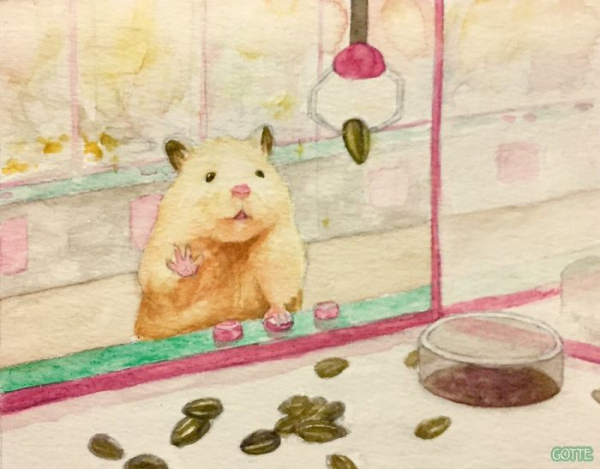 artist illustrates the typical life of a japanese hamster and the result is very cute 5c482d7cc086e 700