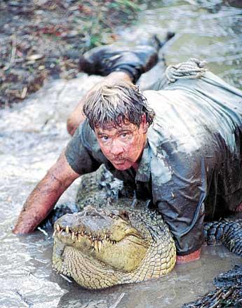 steve irwin on crocs back