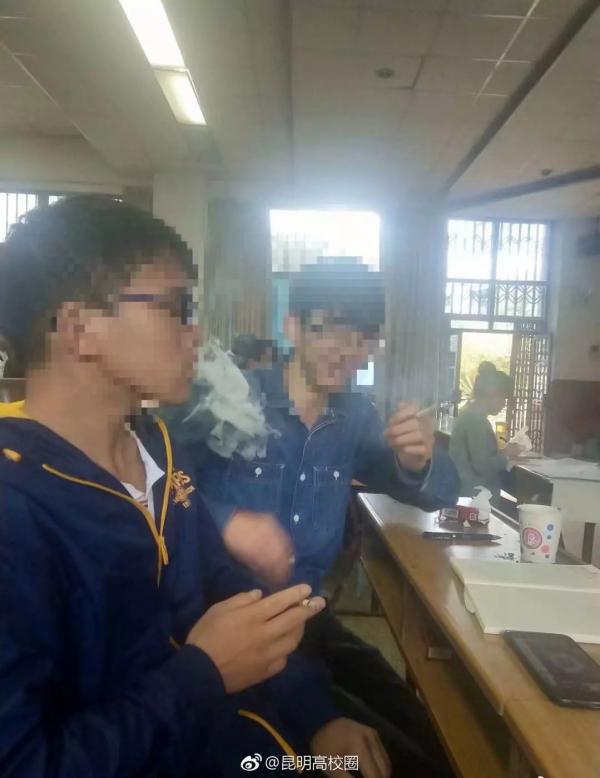 lost bird hut thuoc trong truong dai hoc 2