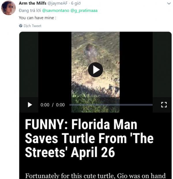 lostbird vn florida man john turtle