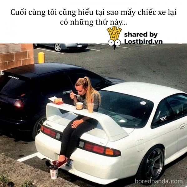 funny food memes 52 5bc4a3b5dd0d0 700