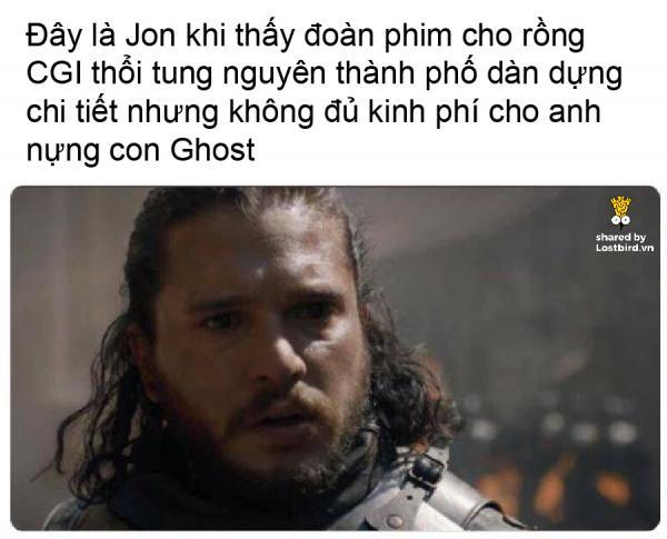 lostbird meme got 03