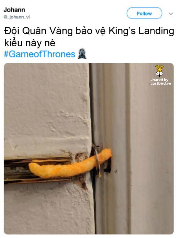 lostbird meme got 05