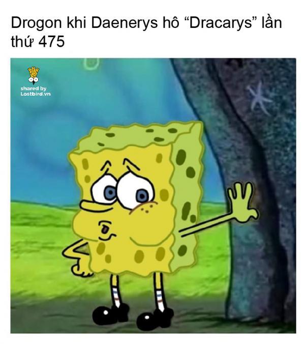 lostbird meme got 11