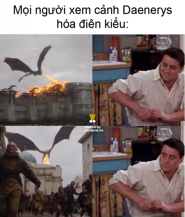 lostbird meme got 14