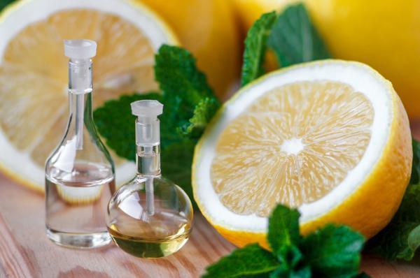 3 smell citrus fragrances shutterstock 378423592