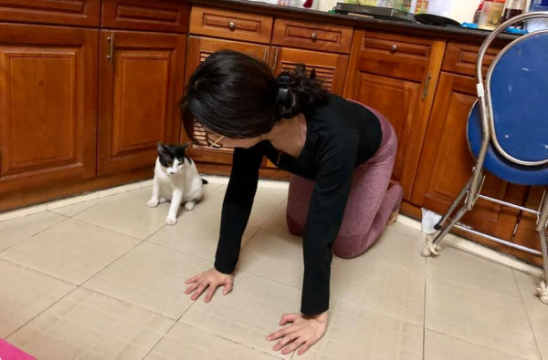lost bird meo tap yoga 5