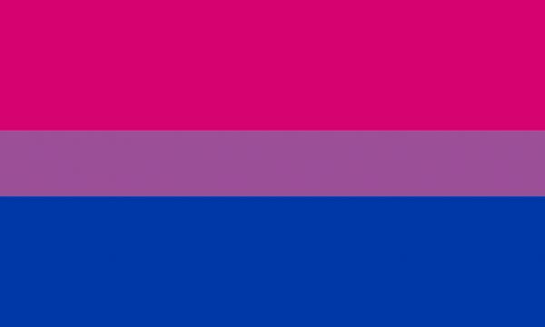 1024px bisexual pride flag svg